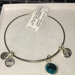 Jewelry - Ali and Ani Silver December Birthstone Bracelet